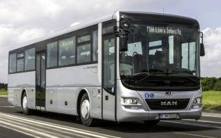 Автобусы man (весь модельный ряд): цены и характеристики, фото и отзывы