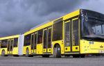Автобусы маз (весь модельный ряд): цены и характеристики, фото и отзывы